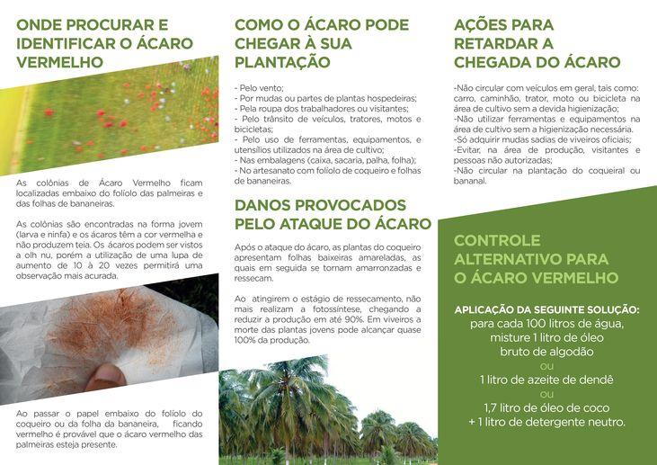 AÇÕES PARA RETARDAR A CHEGADA DO ÁCARO-VERMELHO-DAS-PALMEIRAS
